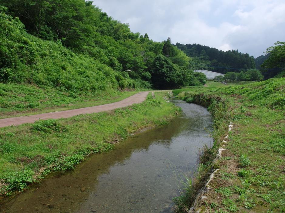 広川ダム公園