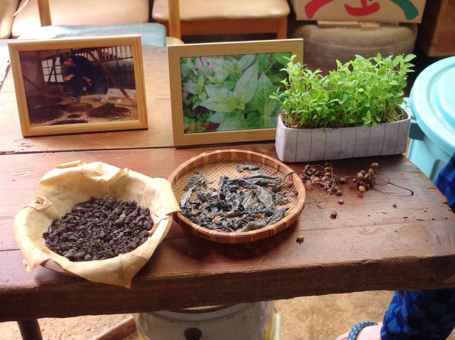 藍の葉と発酵させた蒅